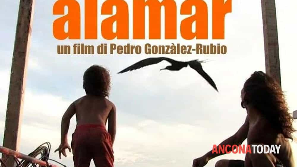 alamar...un film che profuma d'estate al cinema italia di ancona-2