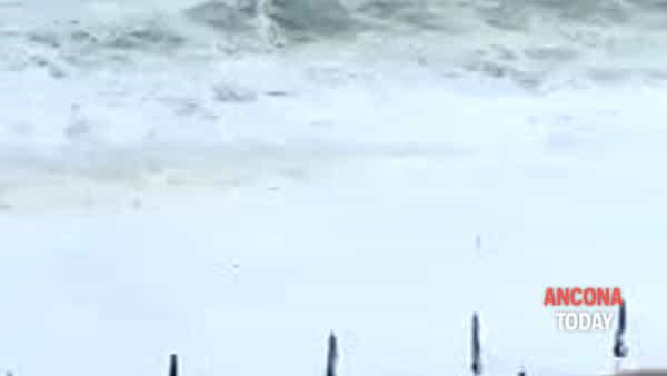 Che mareggiata! La riviera sembra la California | VIDEO