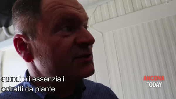 Allevamento ad alta tecnologia: dentro il nuovo stabilimento della Fileni – VIDEO