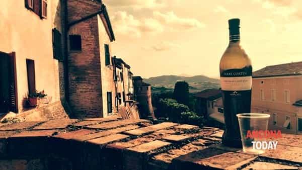 verdicchio in festa - montecarotto -2
