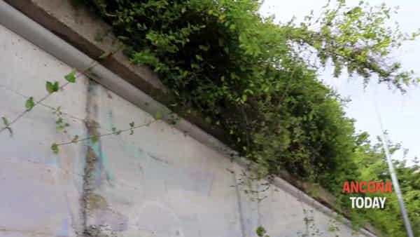 Il ponte è marcio e ora spaventa i residenti: «Abbiamo paura che venga giù» - VIDEO