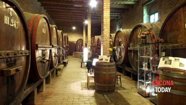 mercatino di natale in cantina tra le botti antiche e anteprima vini 2017-2