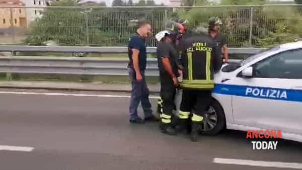 Auto travolge il palo e salta la carreggiata, l'arrivo dei soccorsi - VIDEO