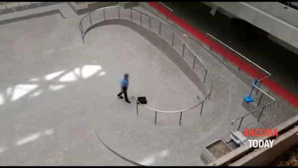 Immagini forti: topo in tribunale, il vigilante lo uccide a bastonate | VIDEO