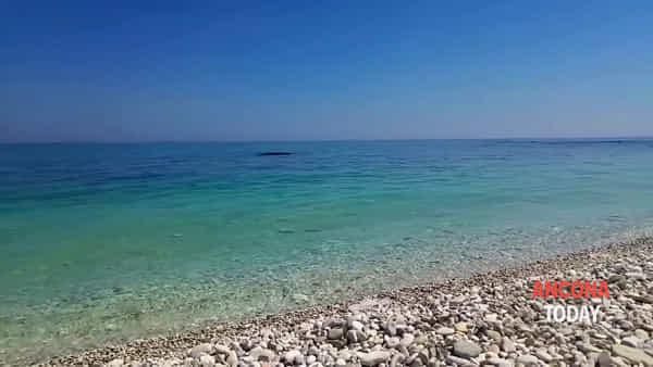 La bella stagione è arrivata e la baia si veste da Caraibi - VIDEO