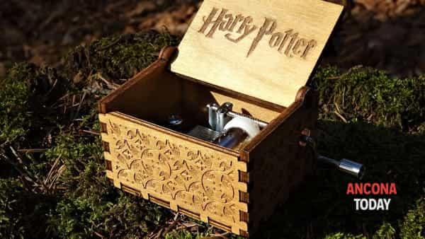 Harry Potter torna al Bosco degli Elfi