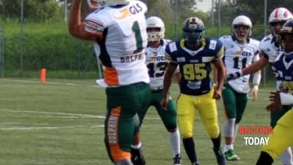dolphins under 19, le aquile son troppo forti-4