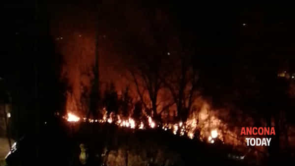 A fuoco la rimessa agricola, animali nell'inferno | VIDEO
