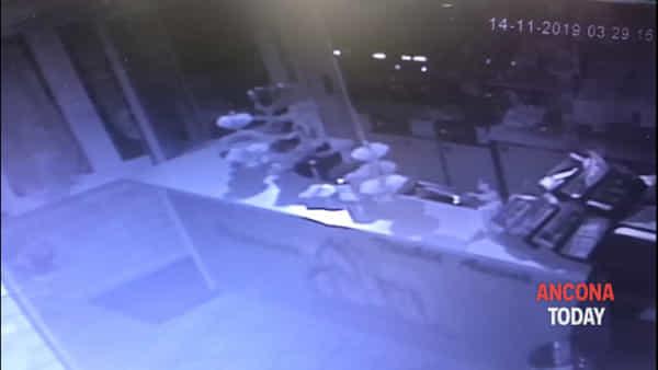 Ladri in pasticceria, il blitz notturno ripreso dalle telecamere di sorveglianza - VIDEO