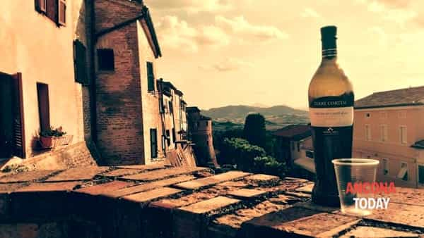 verdicchio in festa - montecarotto -3