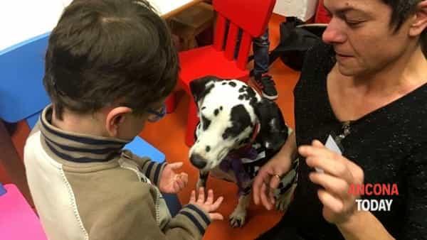 Tiffany porta la gioia in corsia, primi approcci di Pet therapy – VIDEO