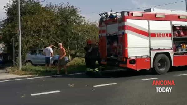 Frontale contro un albero, l'auto sbanda e finisce fuori strada - GUARDA IL VIDEO